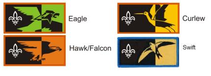 Bird Patrol Badges